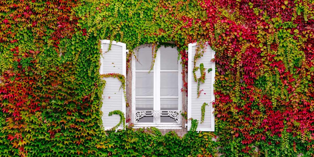 Das richtige Fenster im Eigenheim - darauf kommt es an